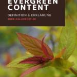 Evergreen Content kompakt erklärt